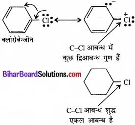 BIhar Board Class 12 Chemistry Chapter 10 हैलोऐल्केन तथा हैलोऐरीन img 29