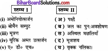 Bihar Board Class 11 Biology Chapter 19 उत्सर्जी उत्पाद एवं उनका निष्कासन