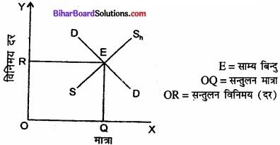 Bihar Board Class 12th Economics Solutions Chapter 6 खुली अर्थव्यवस्था समष्टि अर्थशास्त्र part - 1 img 8