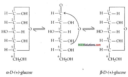 Bihar Board Class 12 Chemistry Solutions Chapter 14 Biomolecules 11