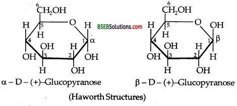 Bihar Board Class 12 Chemistry Solutions Chapter 14 Biomolecules 20