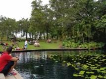 El divertido y tranquilo ambiente en los jardines del Museo de Arte de Puerto Rico.