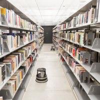 O que faz um bibliotecário?