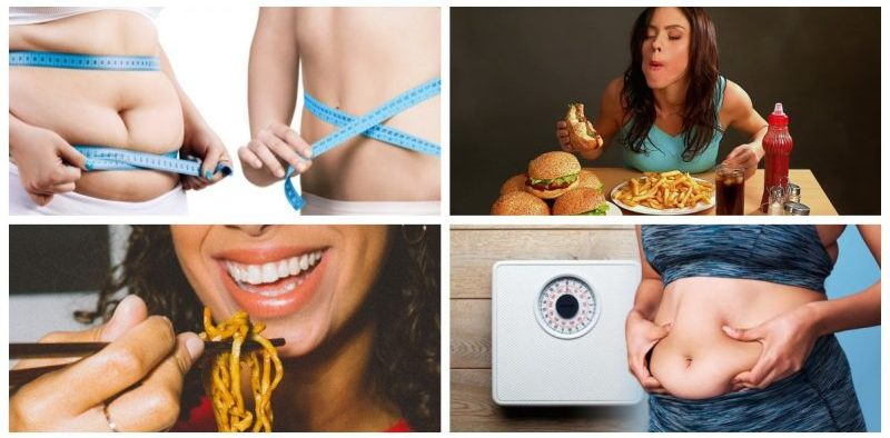 Food Items that Slow Down your Metabolism and Stop you from Losing Weight Feature