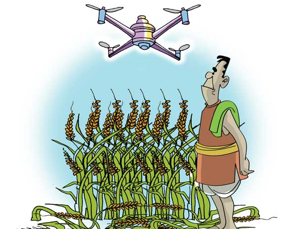 Insurers use drones for crop yields