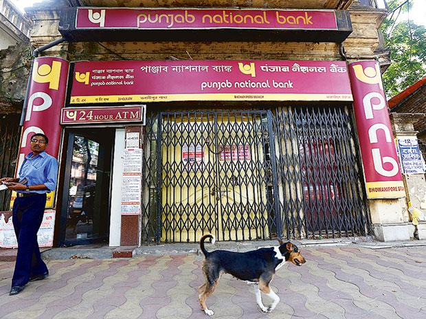 PNB, punjab national bank, pnb news
