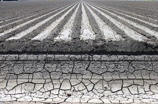 An irrigation canal near a parched field in Manteca, California, April 24, 2015. California's drought has made the Sacramento-San Joaquin Delta's limited supply of freshwater, which helps feed more than 3 million acres of farmland, a central battle zone between farmers and environmentalists. (Jim Wilson/The New York Times)