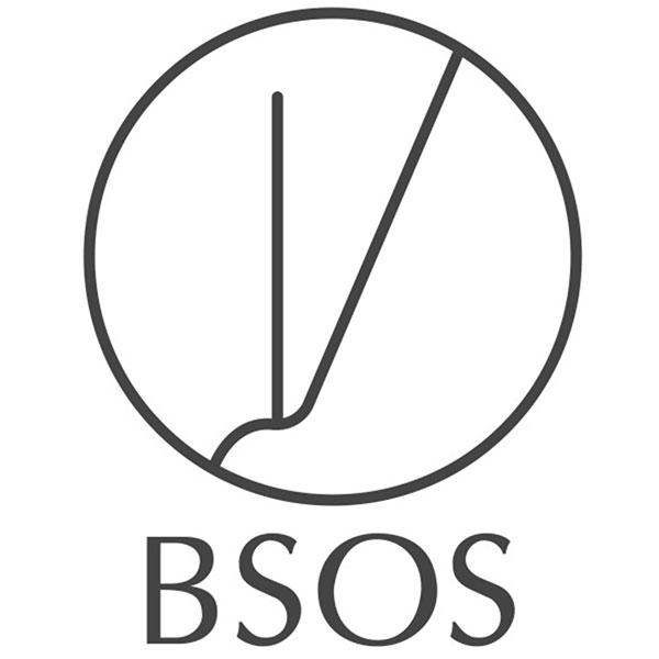 BSOS favicon