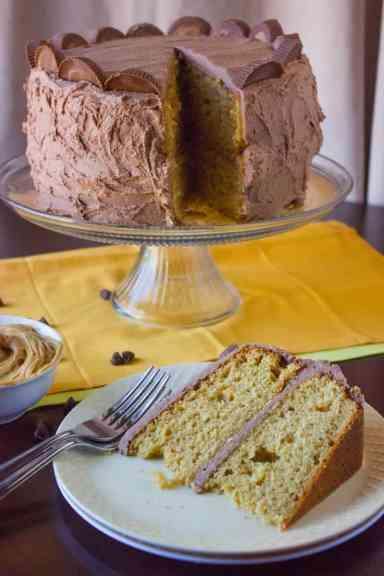 peanut-butter-cake-7