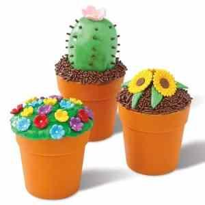 Flower Cake Pots
