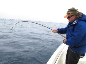 Randy Norris fighting a big yellowfin