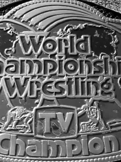 S01 E20   NWA/WCW Television Title