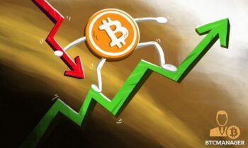 Investors Defy Crypto Market Correction to Remain Optimistic