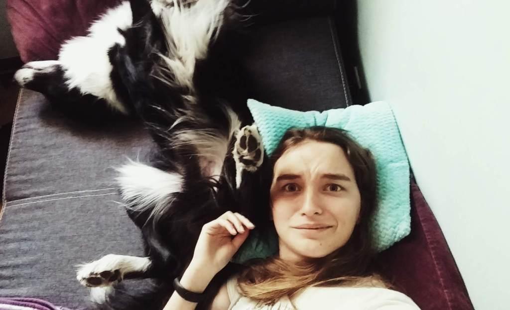 pies nie lubi przytulania - border collie - bthegreat.pl