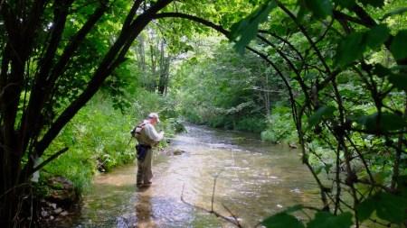 夏の釣りと自然の額縁