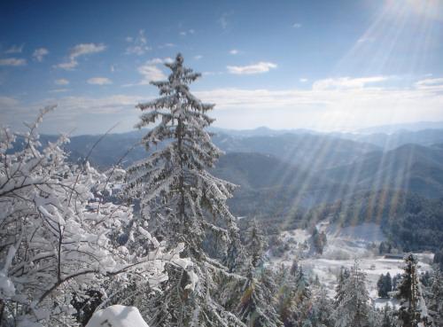 Болгарский зимний курорт Пампорово<> Българският зимен курорт Пампорово