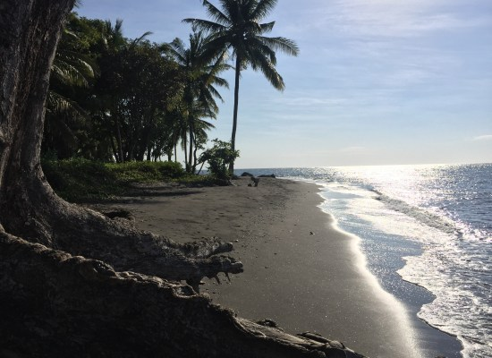 3.2 ht Black sand beachfront investment property, North Shore, Lombok 2