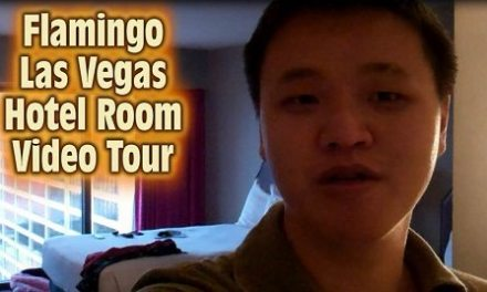 Flamingo Las Vegas Hotel Room Tour (Video)