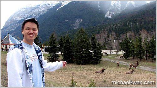 Shooting Wildlife in the Rockies
