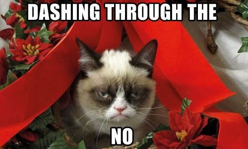 Grumpy Cat: Some Memes Need to Stay on the Internet