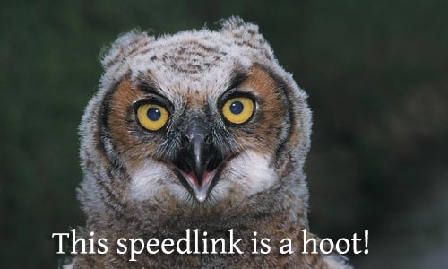 What's Up Wednesdays: The Night Owl