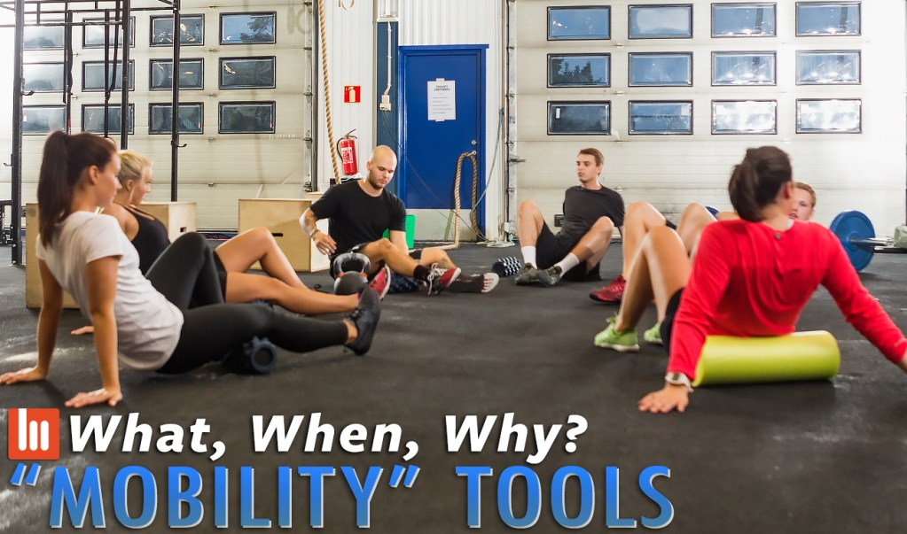 """What, When, Why: """"Mobility"""" Tools"""