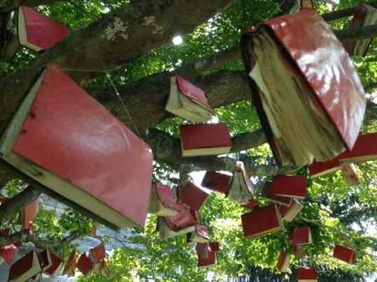 Caroline Bagenal's 'Words and Leaves' fills a maple tree outside the studio with red-bound books. Photo by Kate Abbott
