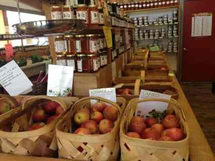 People are free to mix and match many kinds of apples from Mead Orchards. Photo by Kate Abbott