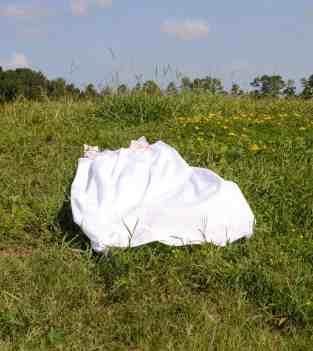Allison Janae Hamilton - Untitled - Houe Dress in Field. Courtesy of the artist