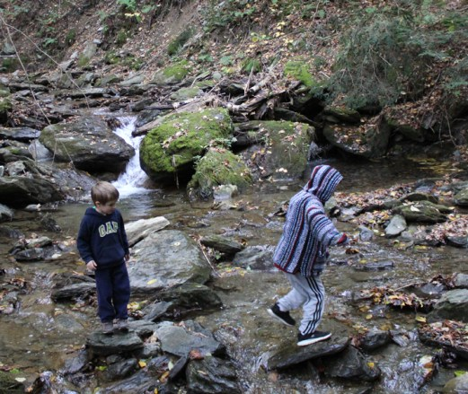 Gabriel and Patrick can't wait to see the falls and leave the trail to explore Steven's Brook. Photo by Thom Smith, courtesy of the artist