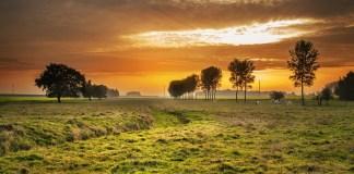 Platteland Twilight Zonsondergang Schemering Landbouwgrond Verkaveling Bouwkavels