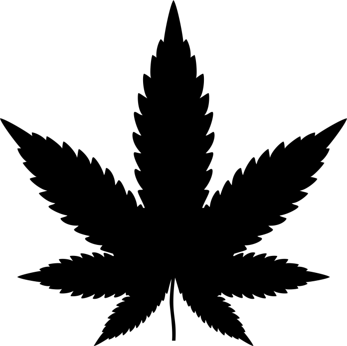 Marihuana hennep cannabis blowen coffeeshop