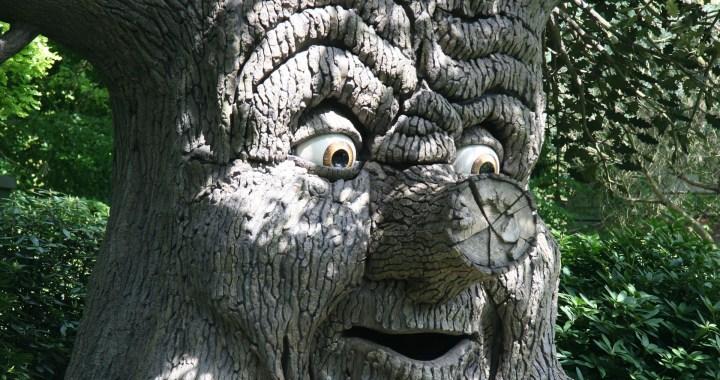 efteling sprookjesboom attractiepark
