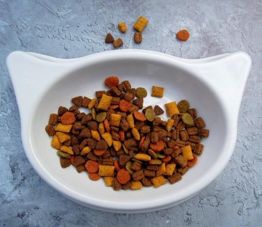 kattenvoer in bakje in de vorm van kattenhoofd huisdierenvoer brokjes voor de poes
