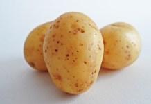 aardappel drie ongeschilde aardappels op witte achtergrond