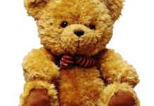 Knuffelbeer knuffelhond
