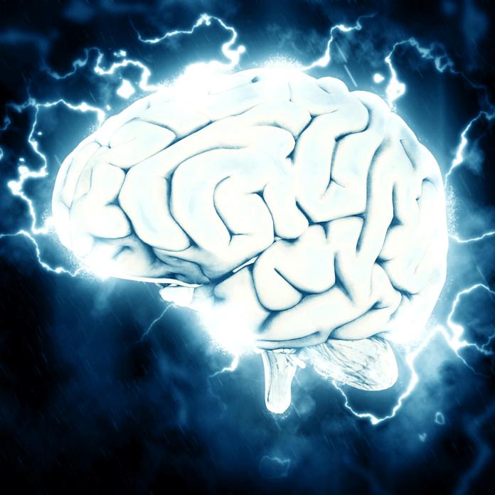Hersenen connecties verbindingen hersenplasticiteit neurotherapie