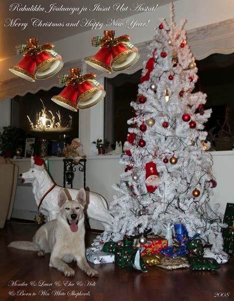 Rahulikke Jõule ja Head Uut Aastat 2008-2009! 3