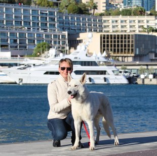 White Shepherd Puppies Monaco France Cote d'Azur Cannes Nice Italy Imperia