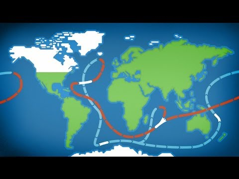 The World Wide Circulation System