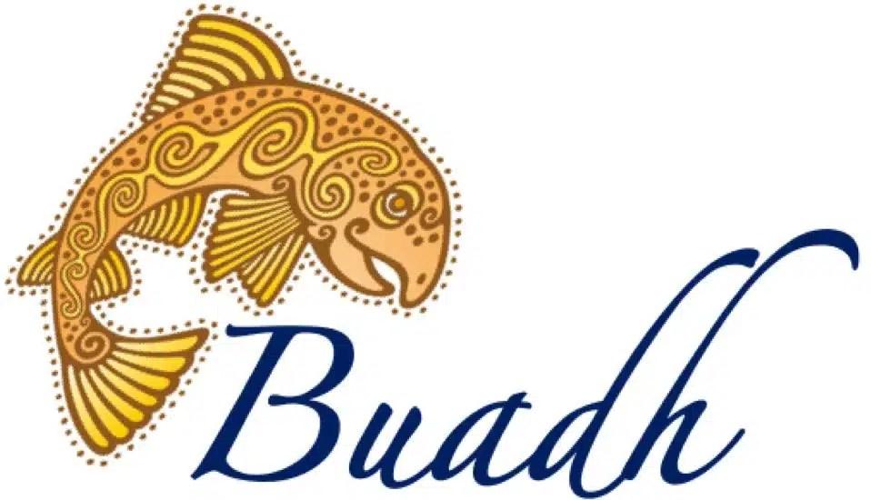 Buadh logo