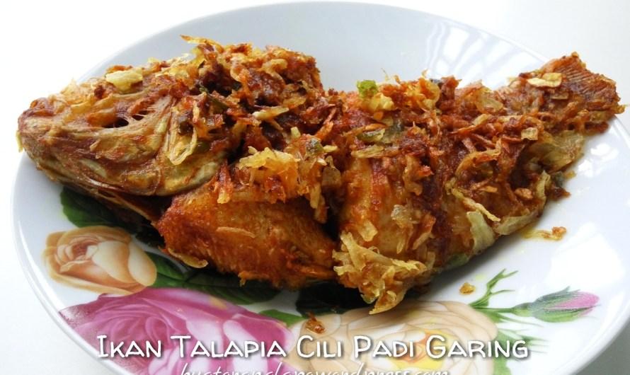 Ikan Talapia Cili Padi Goreng Garing