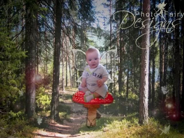 photo fairy designs