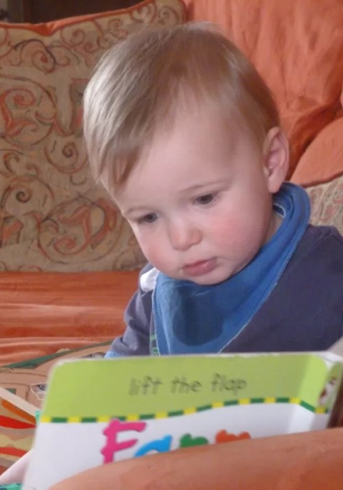 Busy reading about farms