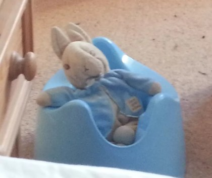 Peter Rabbit in a Pourty
