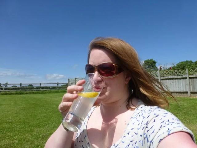 gin in the sun