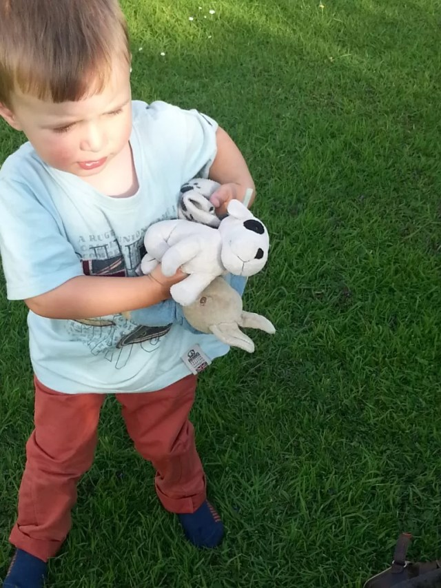 Boy and soft toys