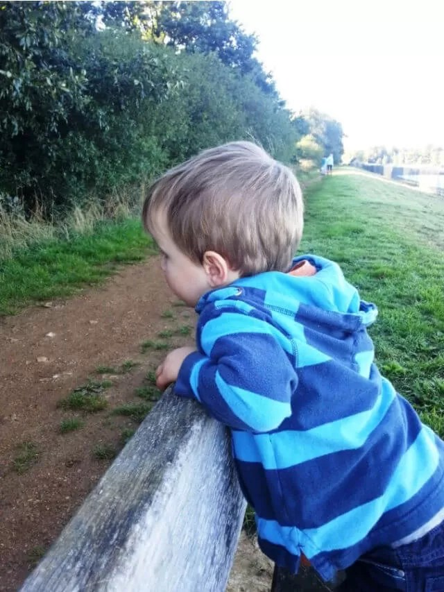 boy in stripy blue hoody looking over a fence (1)