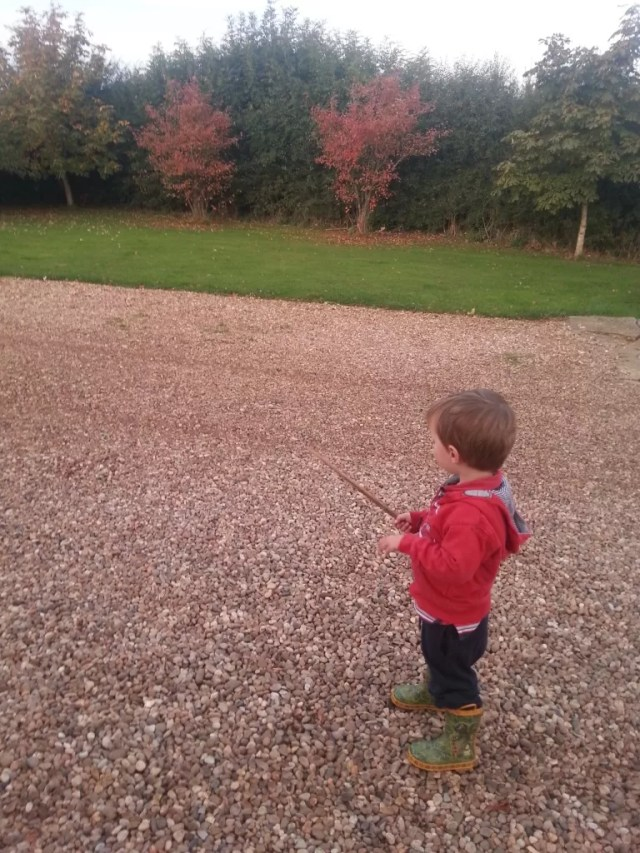 boy and stick