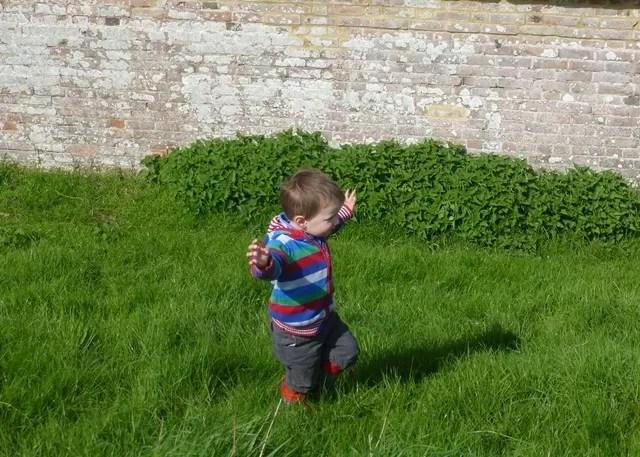 balancing walking on a grassy moat